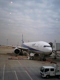 羽田空港なう(・ω・´)